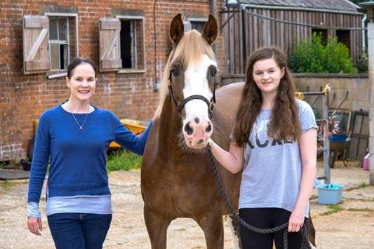 Hythe vets save horse's life with ballpoint pens